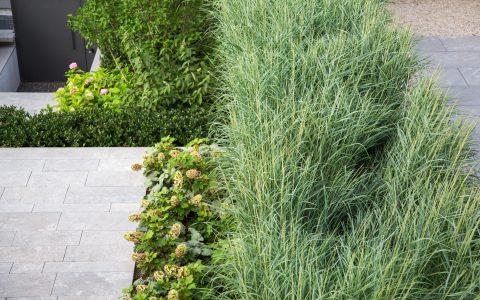 Parolex, Moderne Garten- und Terrassengestaltung im Materialmix: Terrassenförmiger Abgang aus Steinplatten zum Metall Gartentor umgeben von hochwachsenden Gräsern und Grünpflanzen